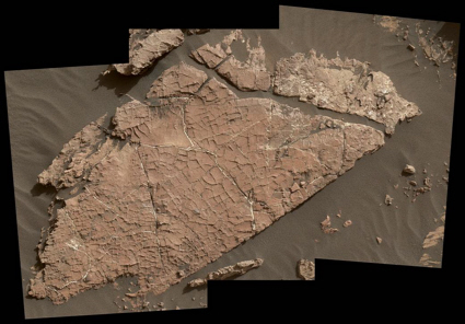 Possible martian mud cracks