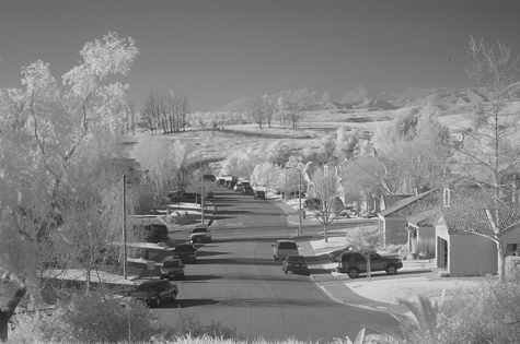 Infrared image taken with the Nikon D70 digital SLR